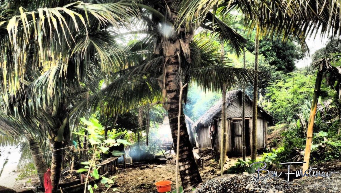 Tropical housing