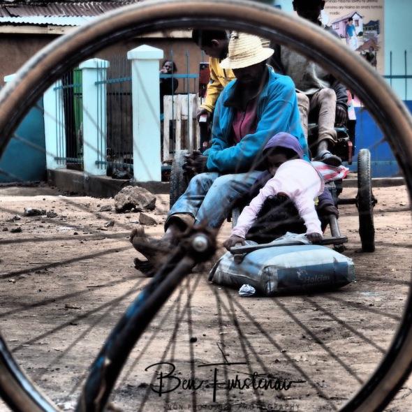 Family cart