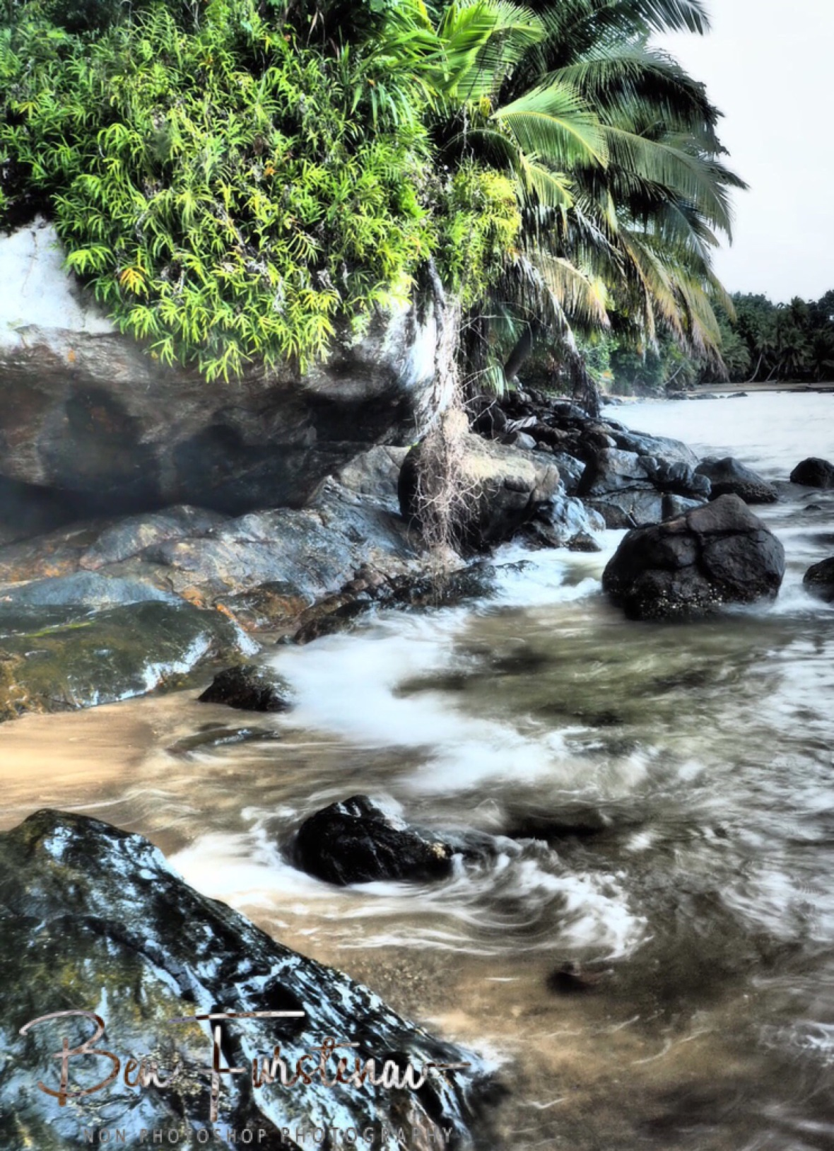 Tropical shores
