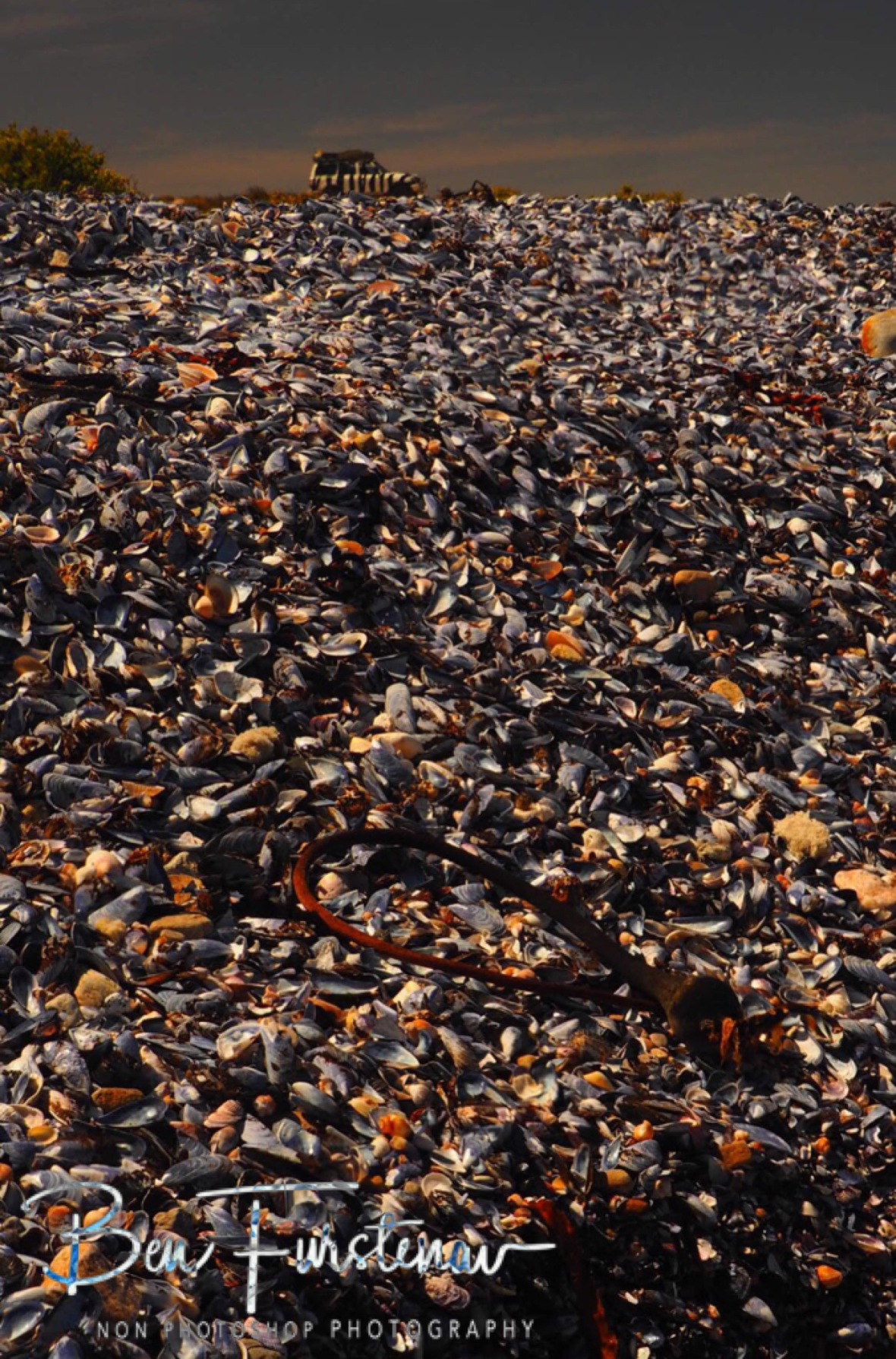 Sea shell mounts as far as the eye can see, Namaqua National Park