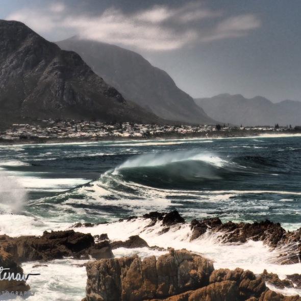 Rolling waves on rolling coastline, Hermanus