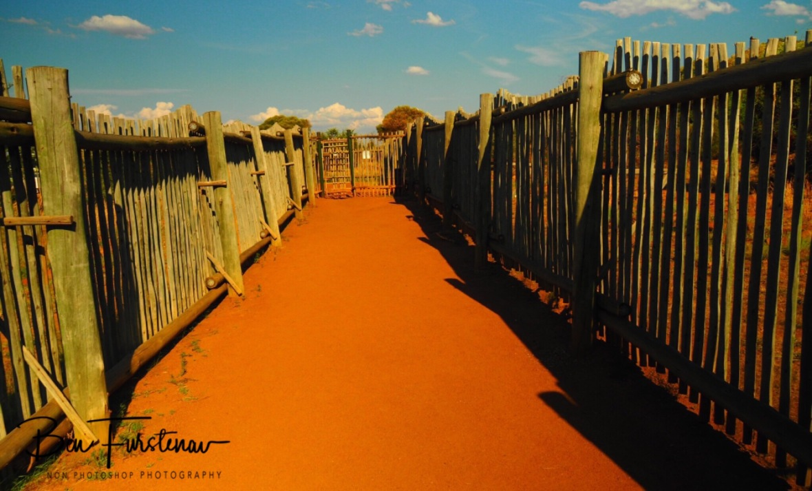 Wooden fences to keep the wildlife safe from humans? Pilansberg National Park
