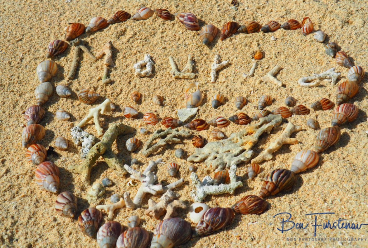 Snail and coral heart, Maurice