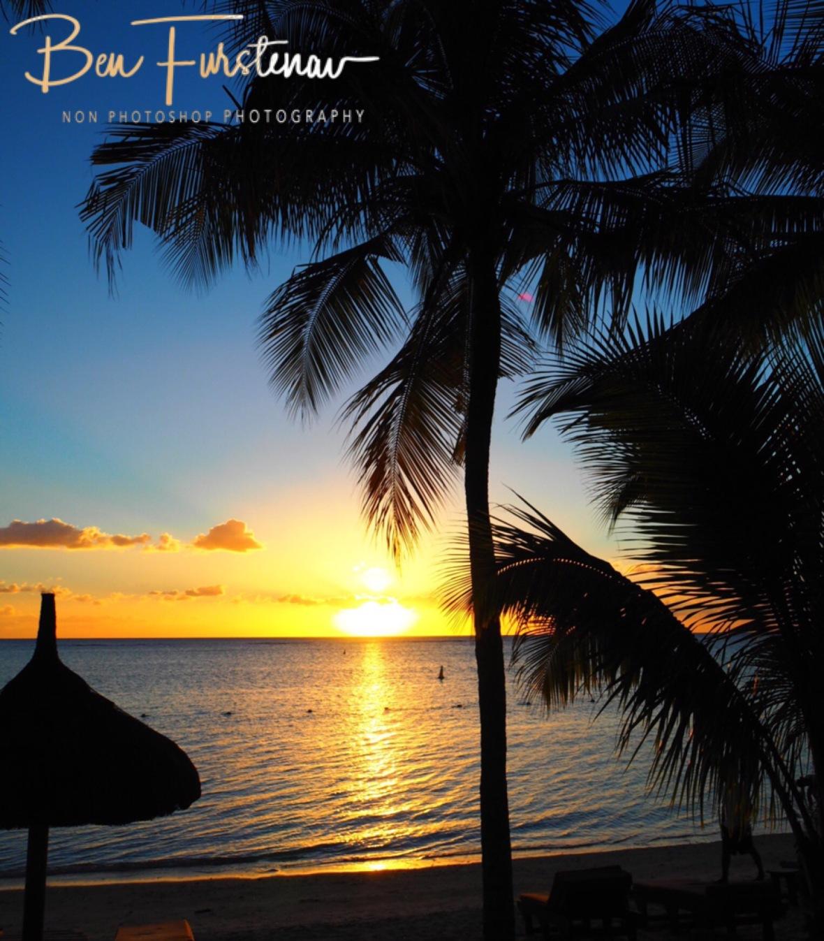 Palm tree sunset, Flic en Flac, Mauritius