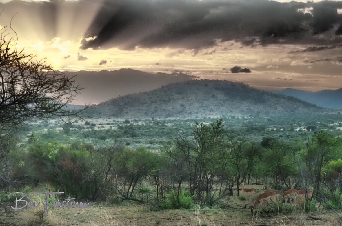 Impressive sunset to an incredible day, Pilansberg National Park