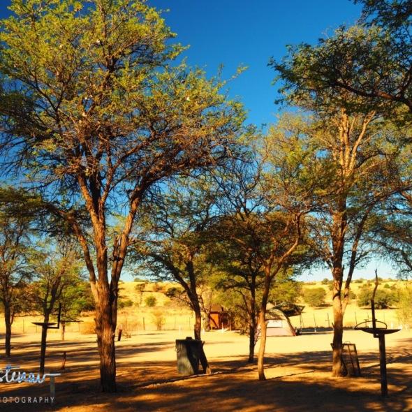 Mata-Mata campground, Kgalagadi Transfrontier Park