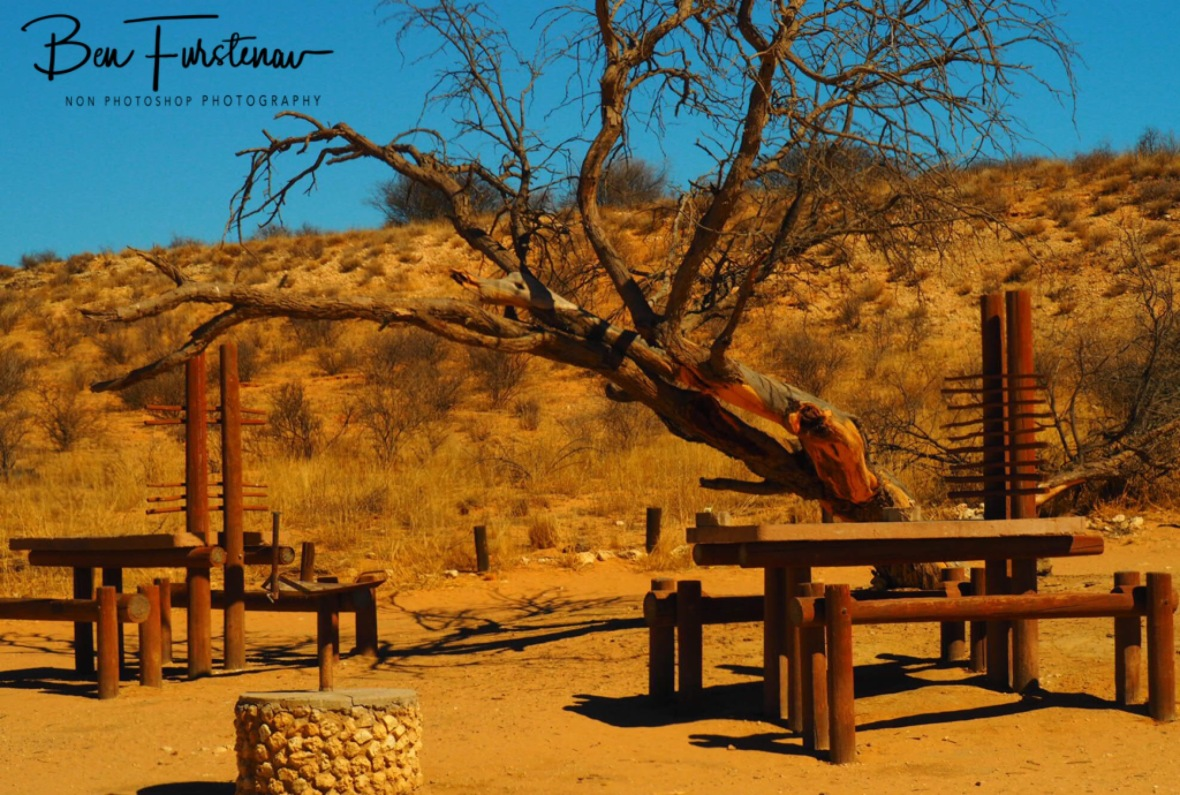Picnic area with little shade, Kgalagadi Transfrontier Park