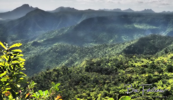 Overlooking Black River National Park,the last Wilderness frontier on Mauritius.