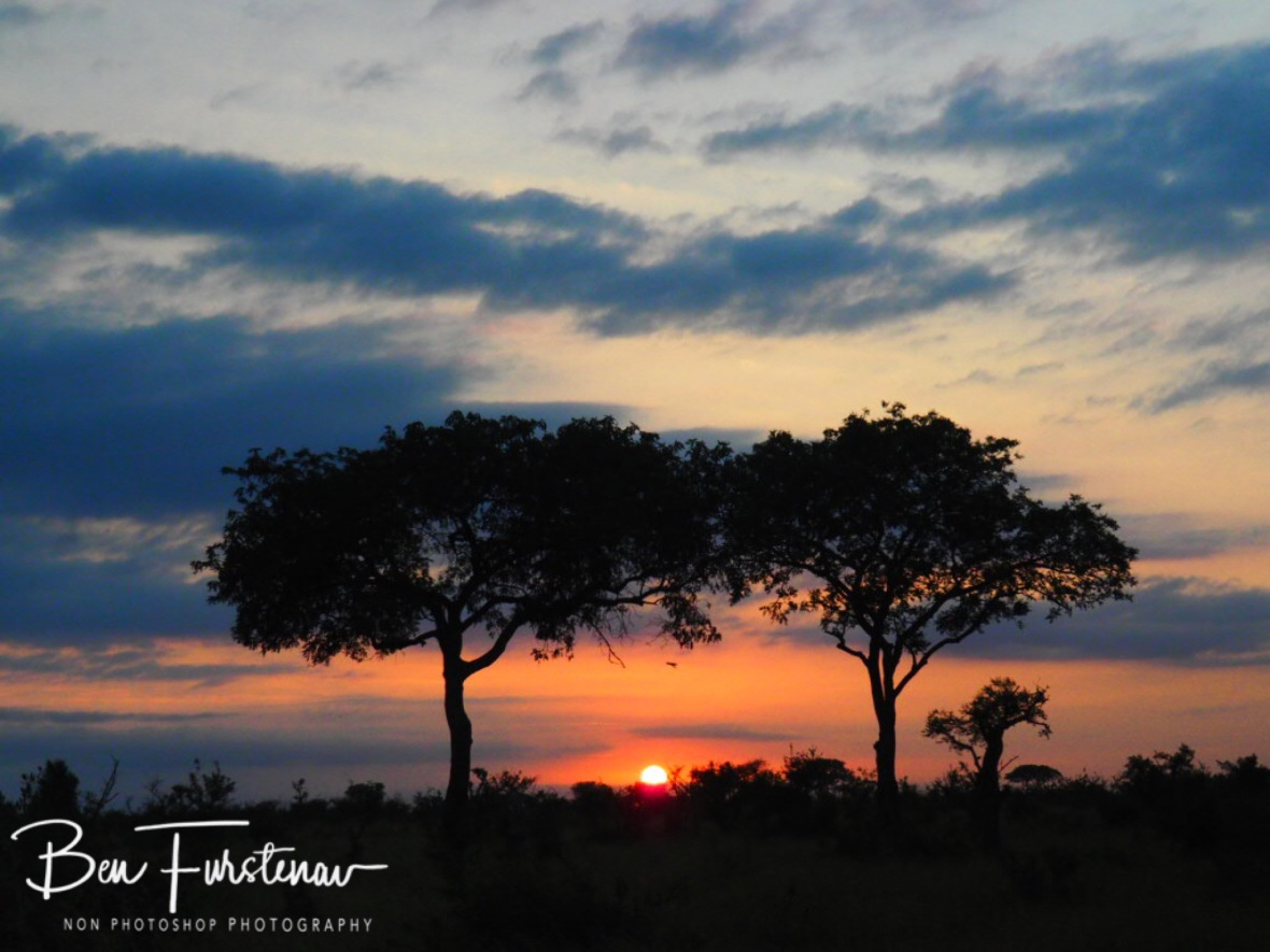 Early morning sunrise, Kruger National Park
