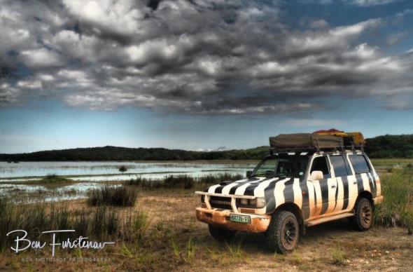 A muddy Zimba along tranquil lakes at Maputo Special Reserve