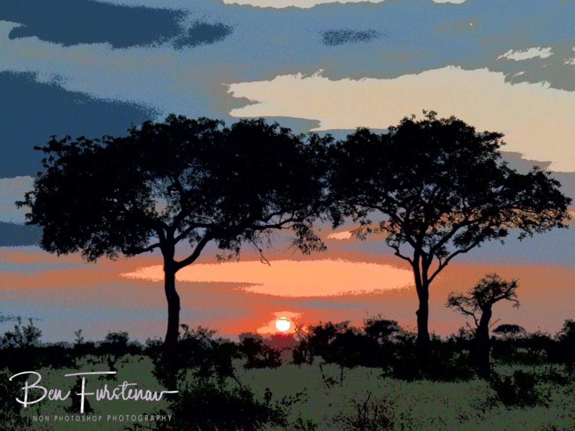 Painted savanna sunrise, Kruger National Park