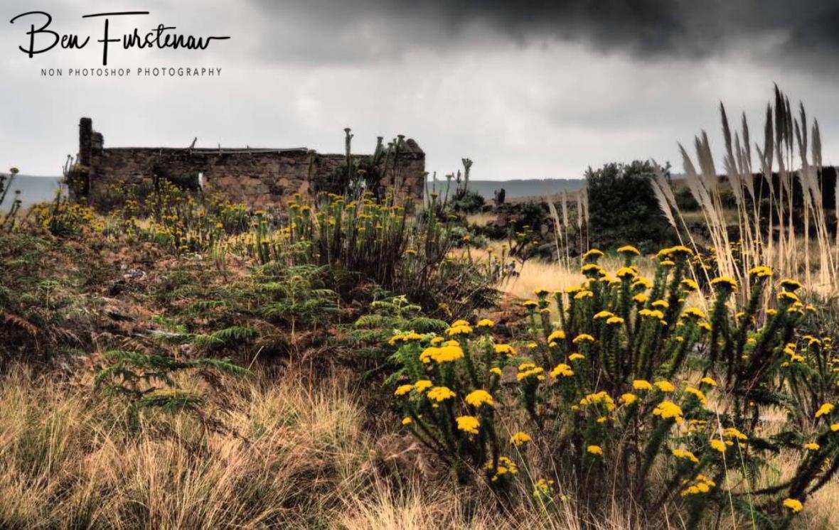 Farmhouse ruins, Sabie
