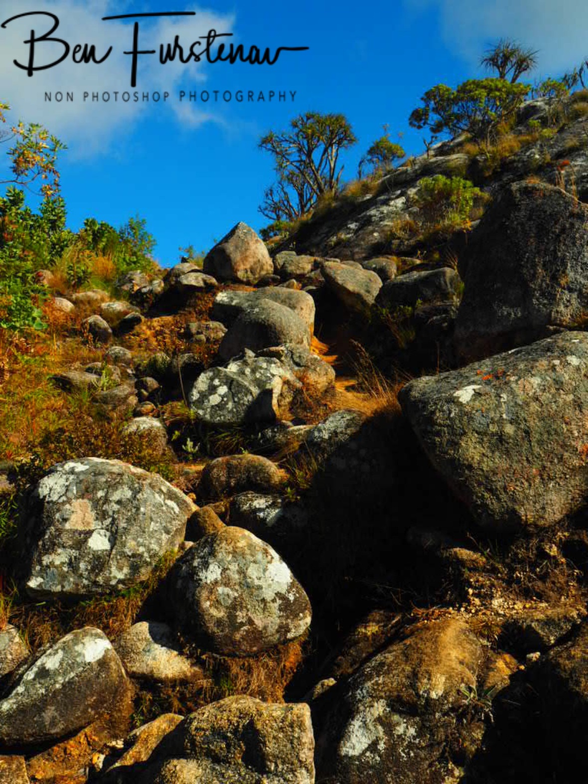 Clear skies brighten all colours and features, Mulanje Mountains, Malawi