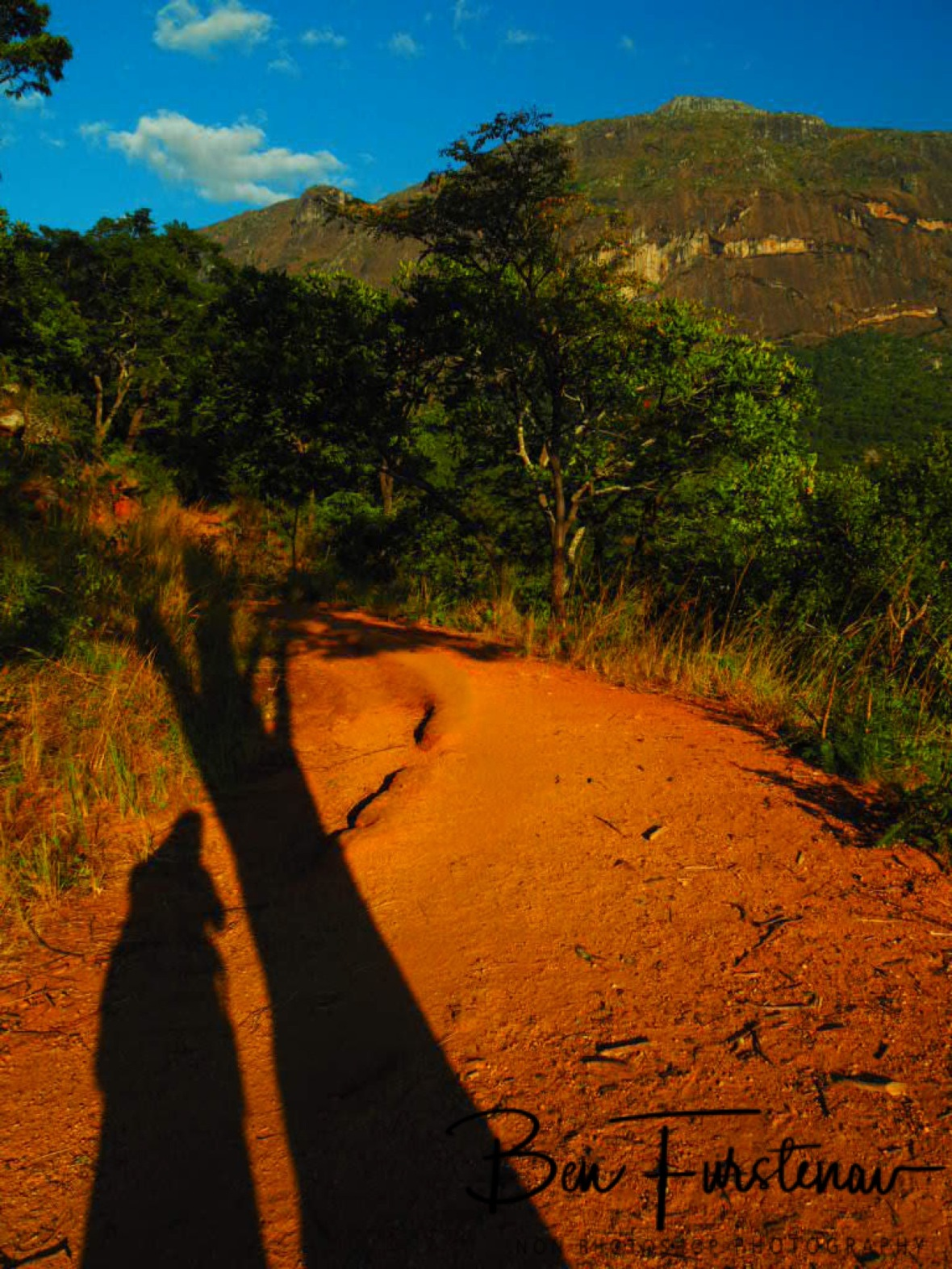 Long shadows on red soil, Mulanje Mountains, Malawi