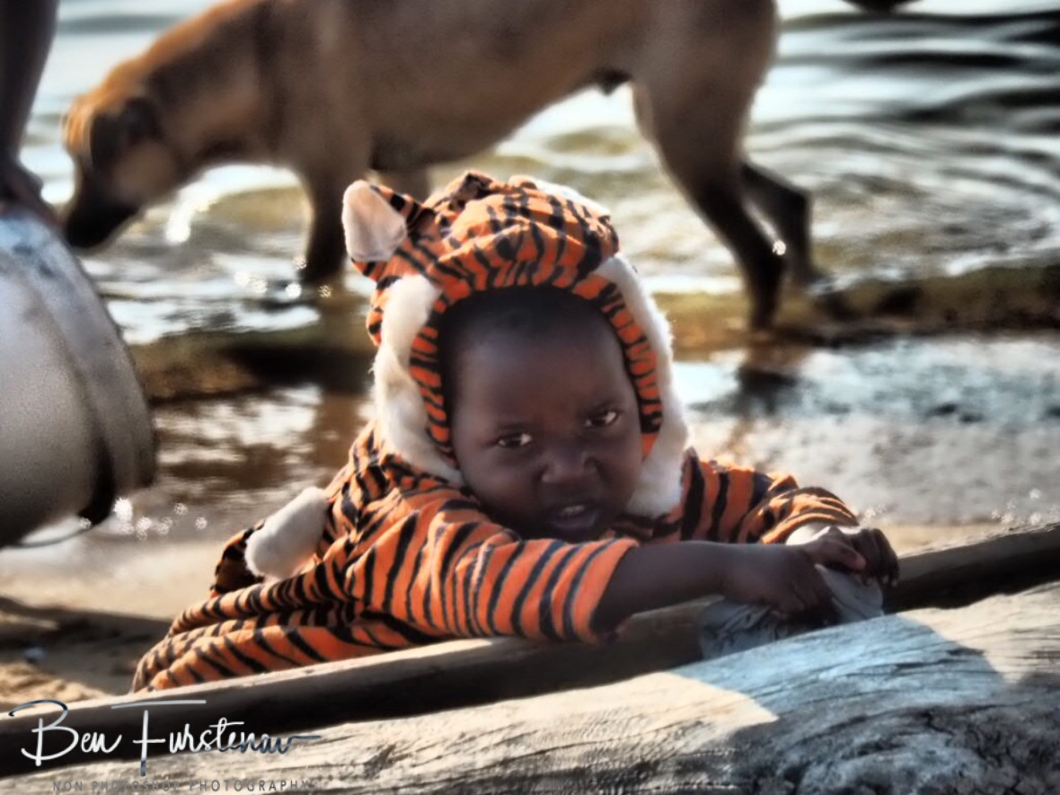 Tiger princess looking rather cute in Chembe, Cape Maclear, Lake Malawi, Malawi