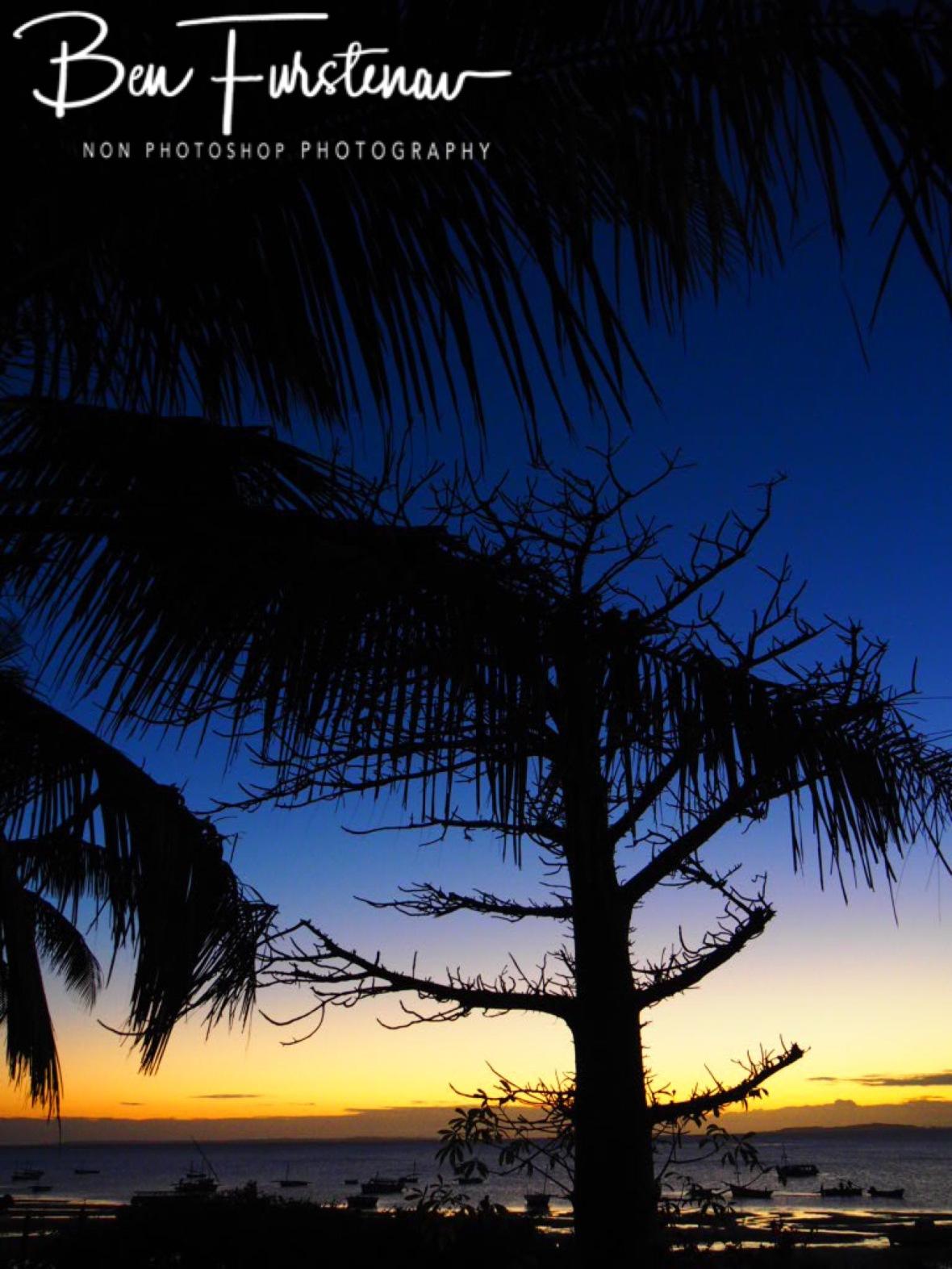 Baobab sunrise, Vilankulo, Mozambique
