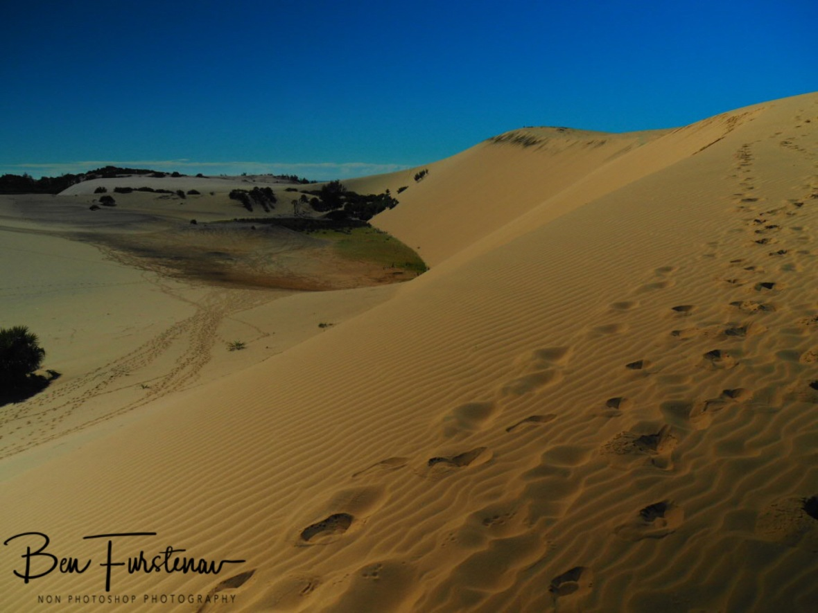 Sandtracks up the dunes, Bazaruto Island, Vilankulo