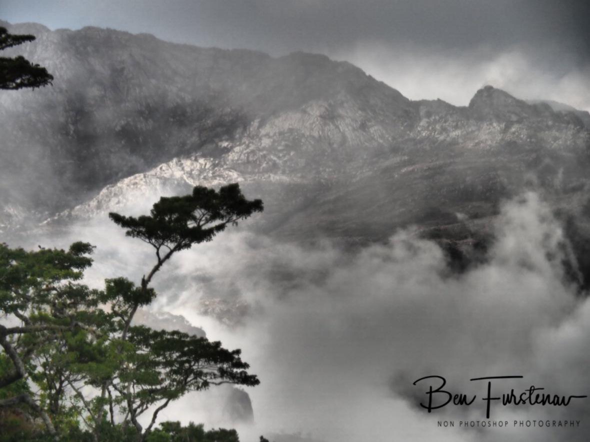 Ghostly mistified, Mulanje Mountains, Malawi