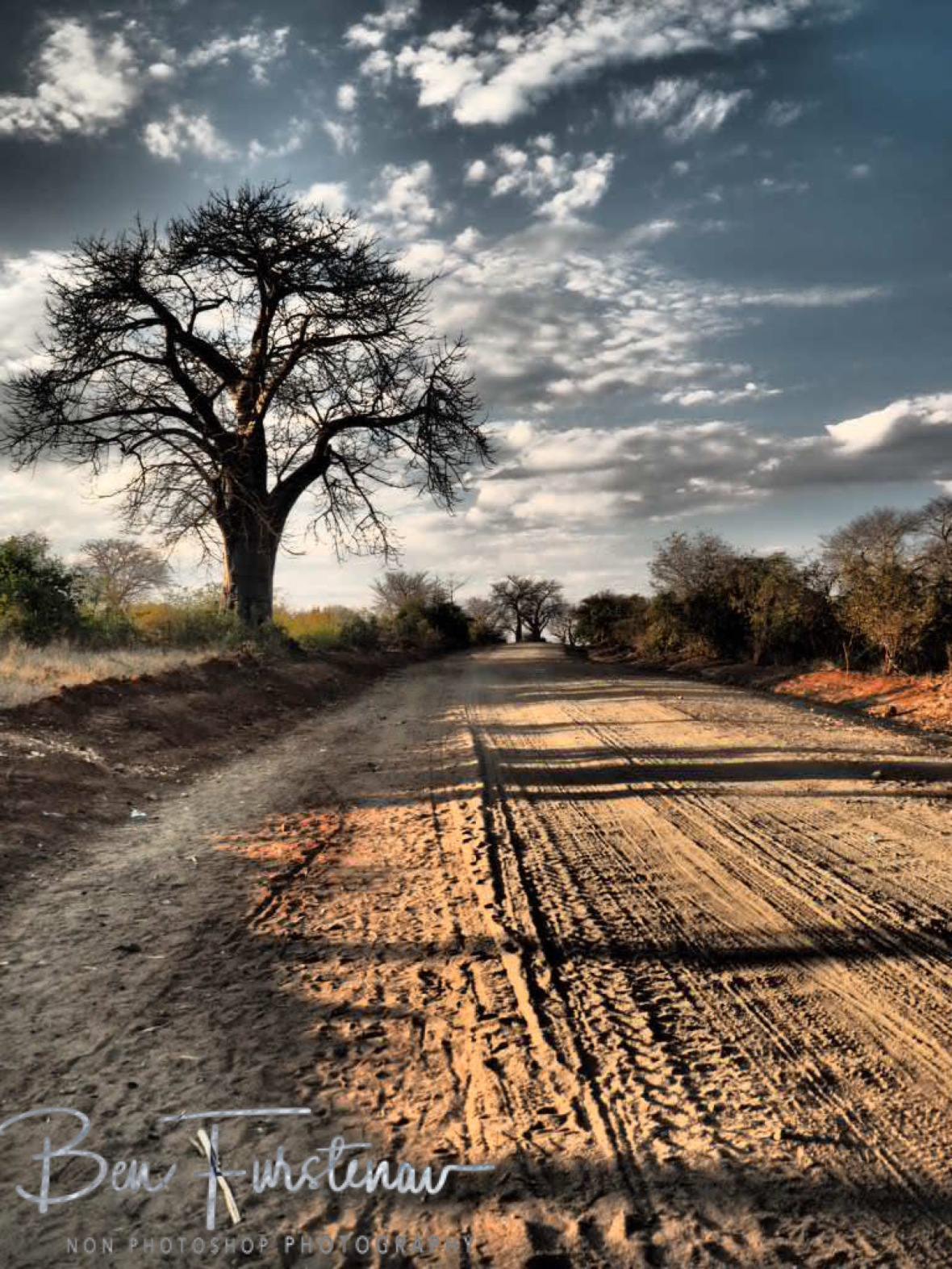 Dusty tracks along Baobab Forrest, Mwanza Region, Malawi