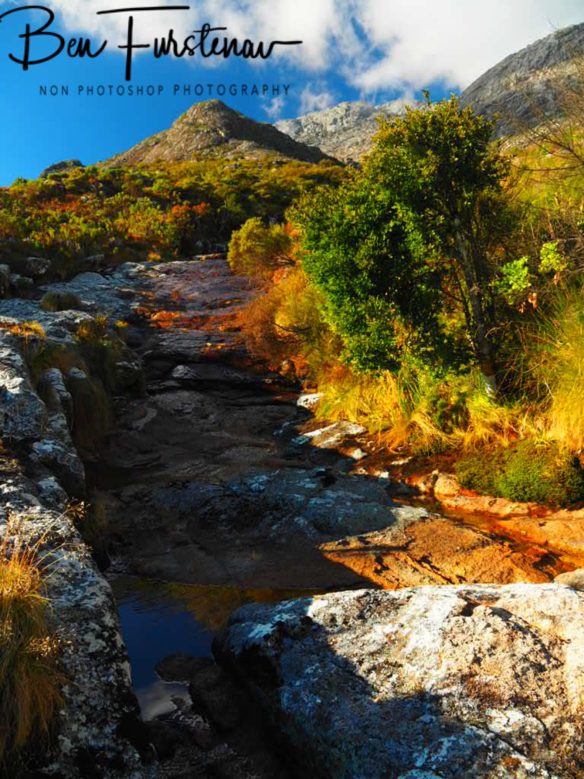Creek and Mulanje Mountains above, Malawi