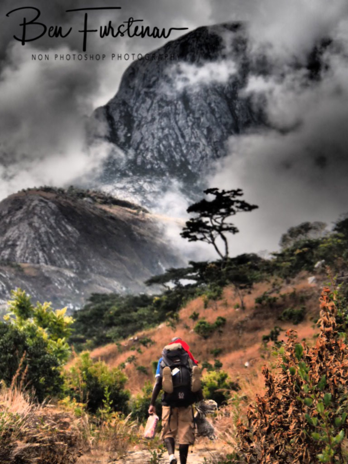 Porter Charles running of in to thick bush and clouds, Mulanje Mountains, Malawi