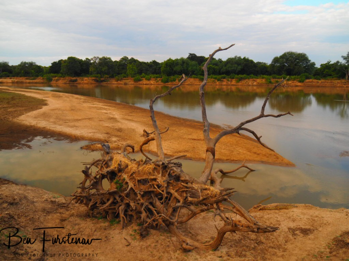 The result off torrent waters of South Luangwa River, Zambia