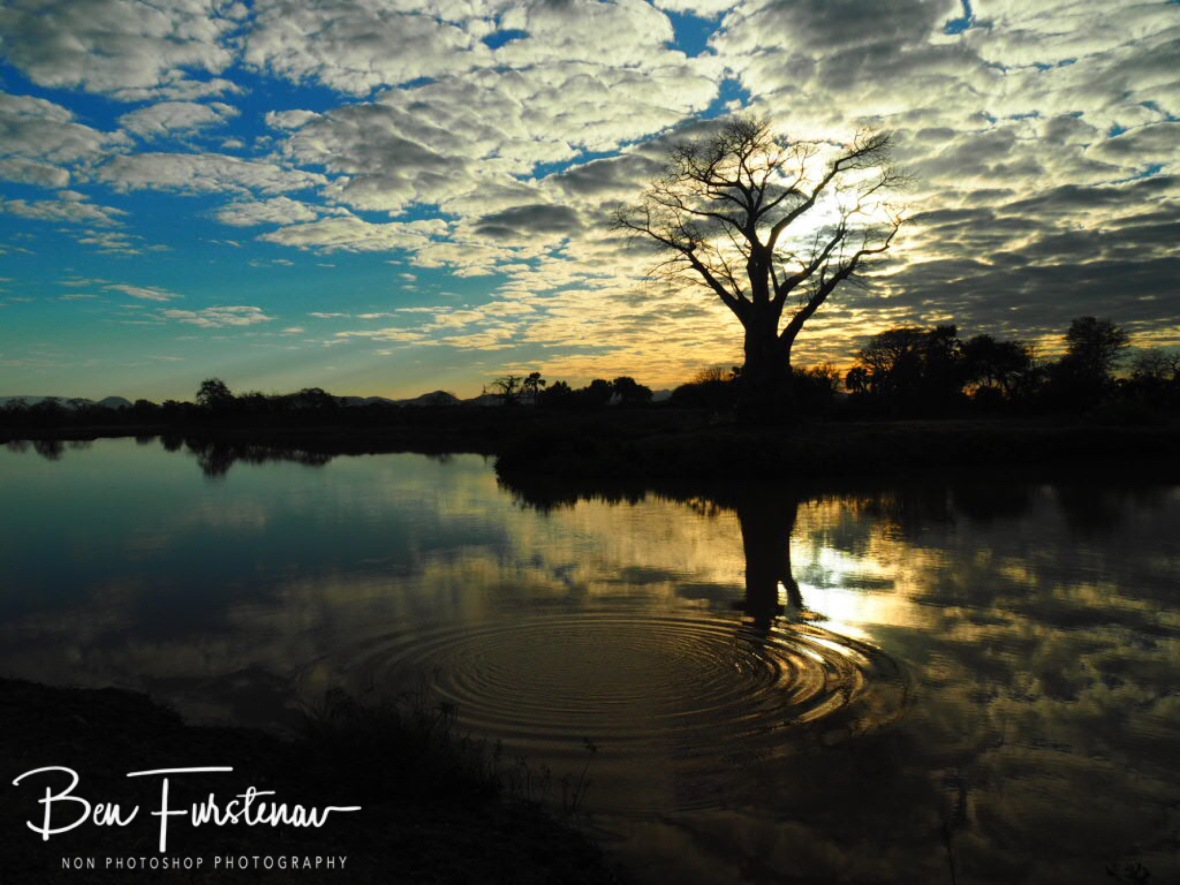 Rippled reflections on surroundings, Lower Zambezi Valley, Zambia