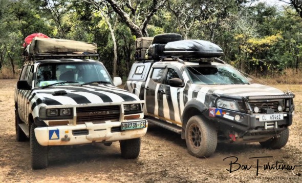 Zebra wagon double, Pioneer Camp, Lusaka, Zambia