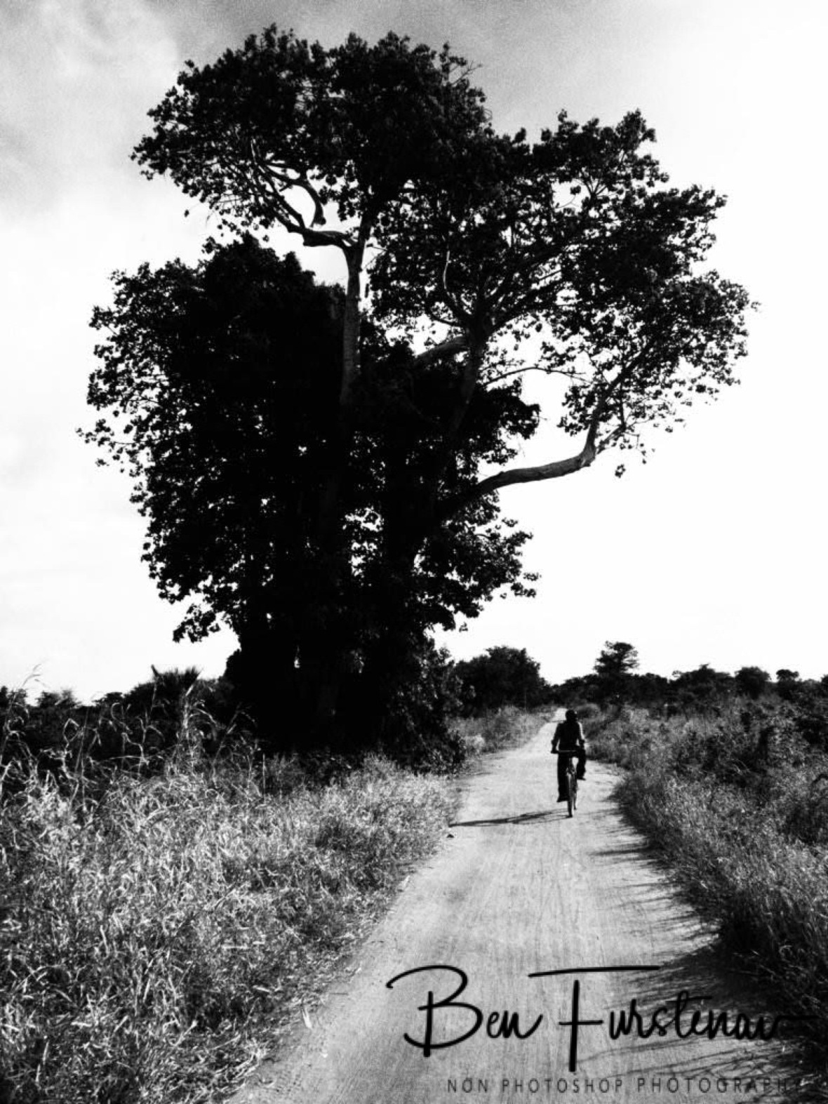 A lone cyclist passing by, Liwonde Region, Malawi