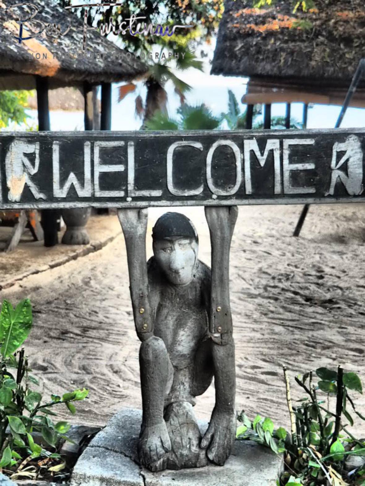 Monkey welcome, Chembe, Cape MaClear, Lake Malawi, Malawi