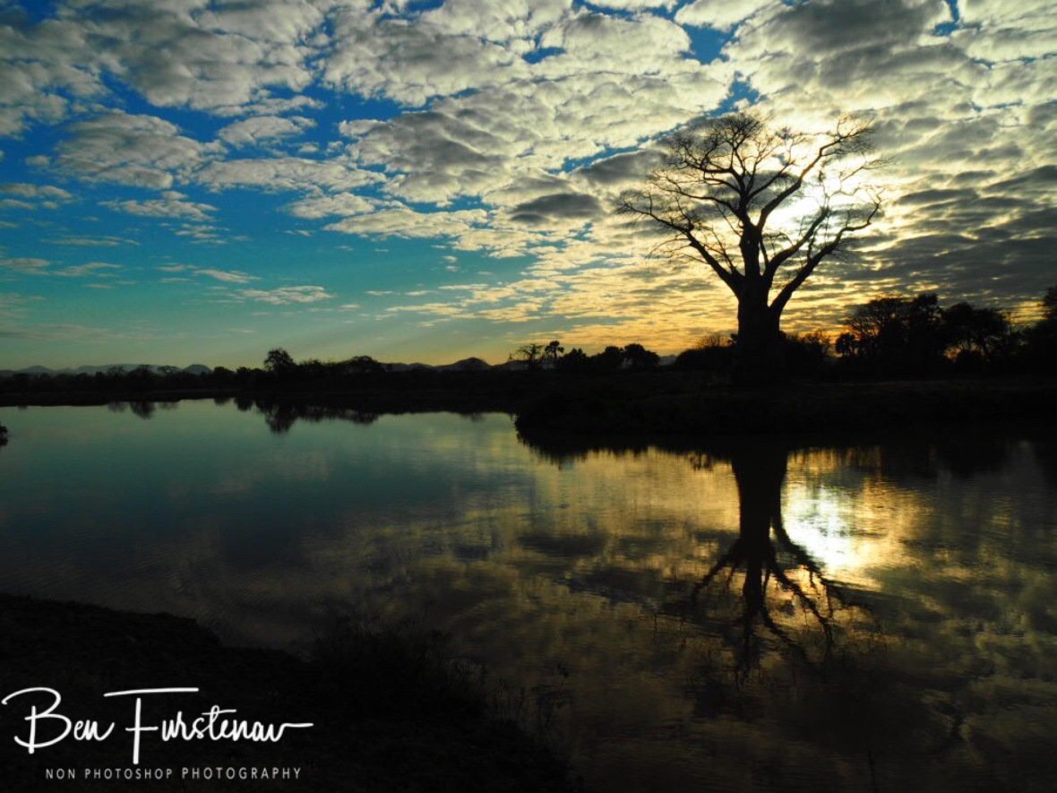Lake surroundings reflections, Lower Zambezi Valley, Zambia