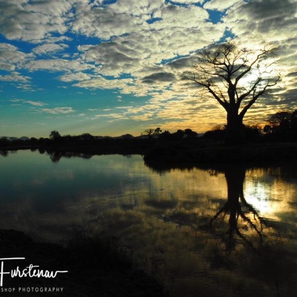 Lake surroundings reflections, Lower Zambezi Valley, Zambia