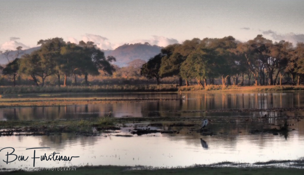 Another tranquil morning at Vwaza Marsh National Reserve, Malawi