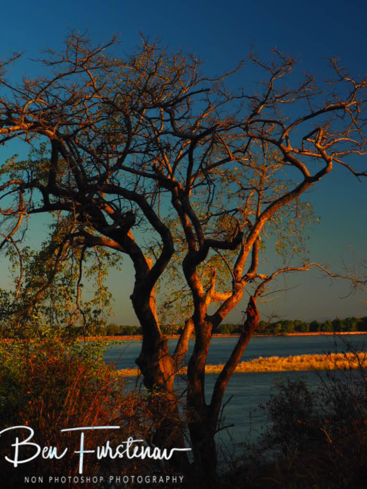 Almost sunset on the mighty Zambezi River, Lower Zambezi Valley, Zambia