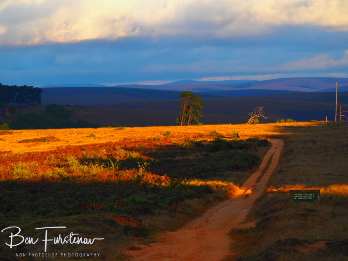 The sun trying to shine through over Nyika National Park, Malawi