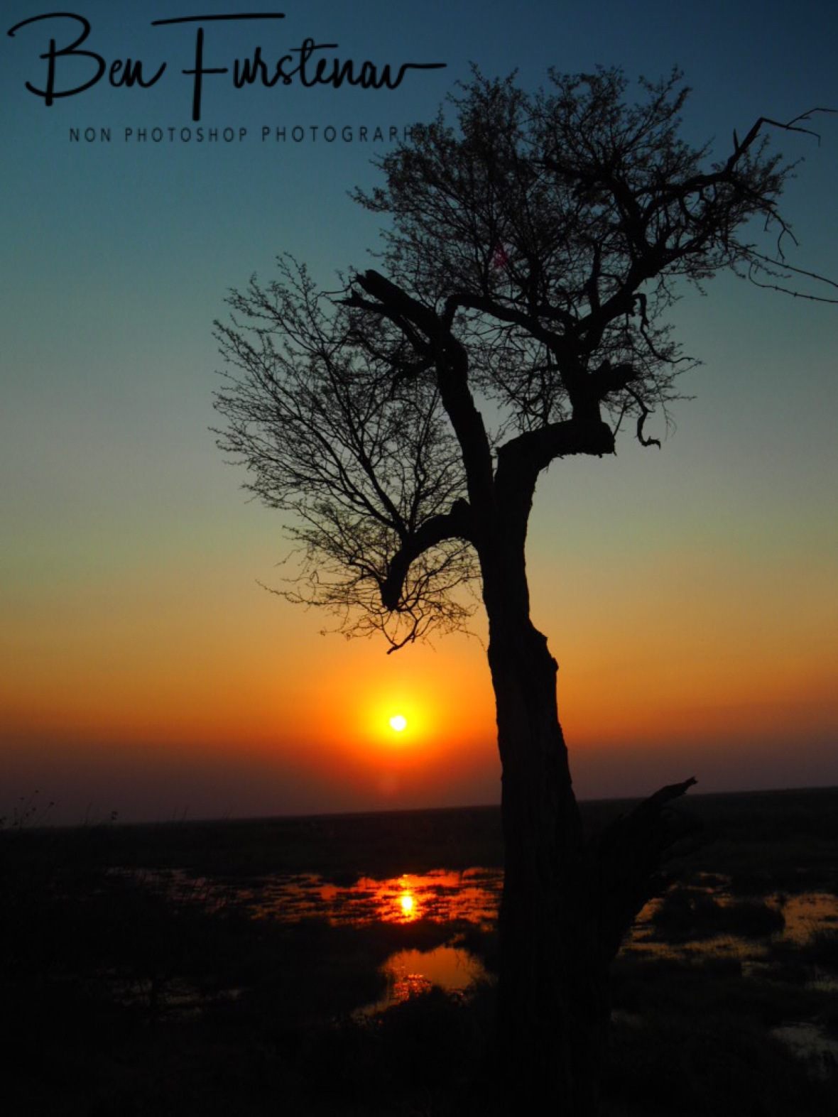 Sun fading over Linyanti swamp, Chobe National Park, Okavango Delta, Botswana