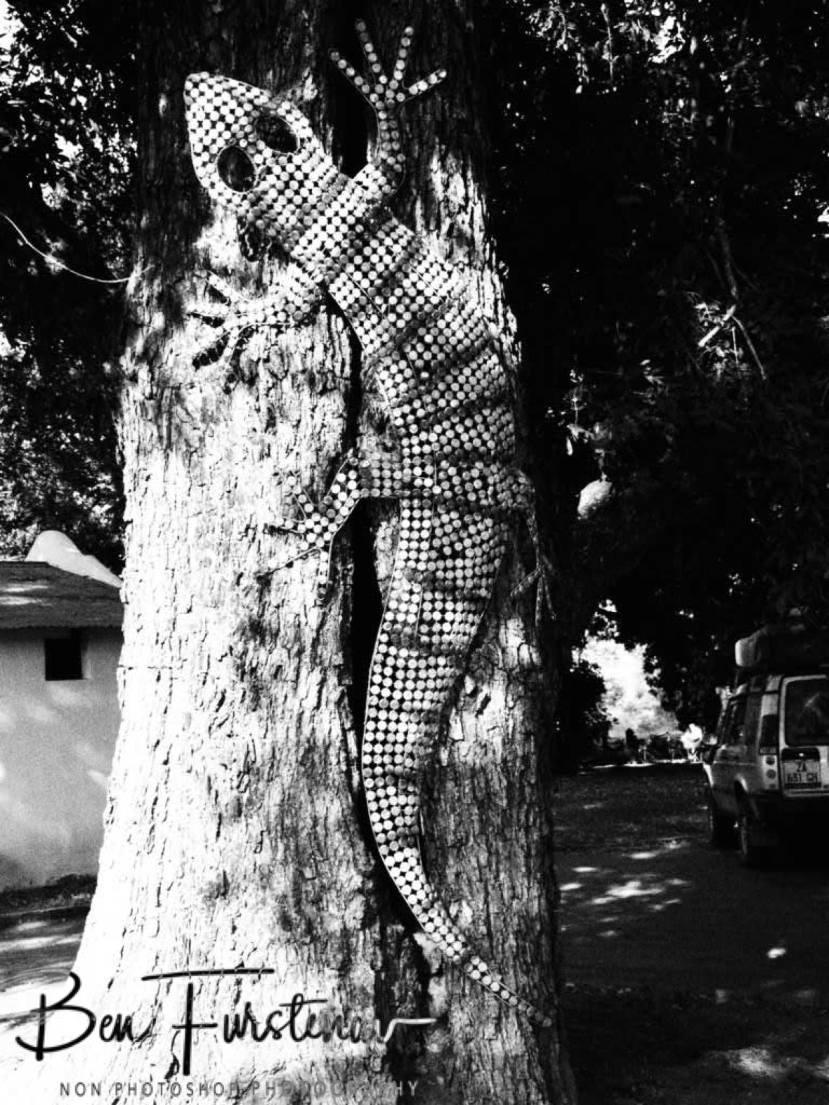 Oversized Gecko art at Thorn Tree Lodge, Livingstone, Zambia