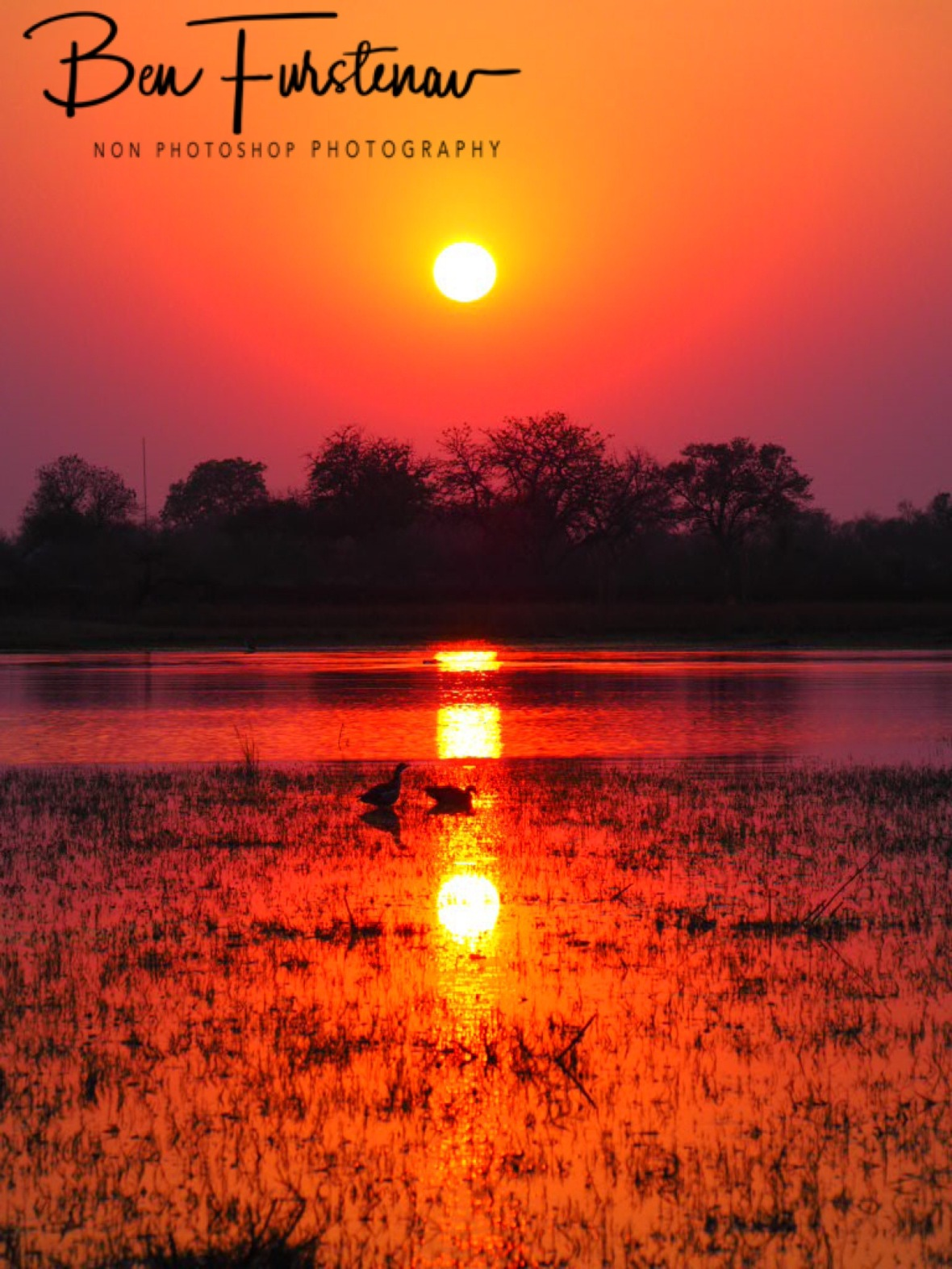 Red glowing sunrise at Third Bridge, Moremi National Park, Okavango Delta, Botswana