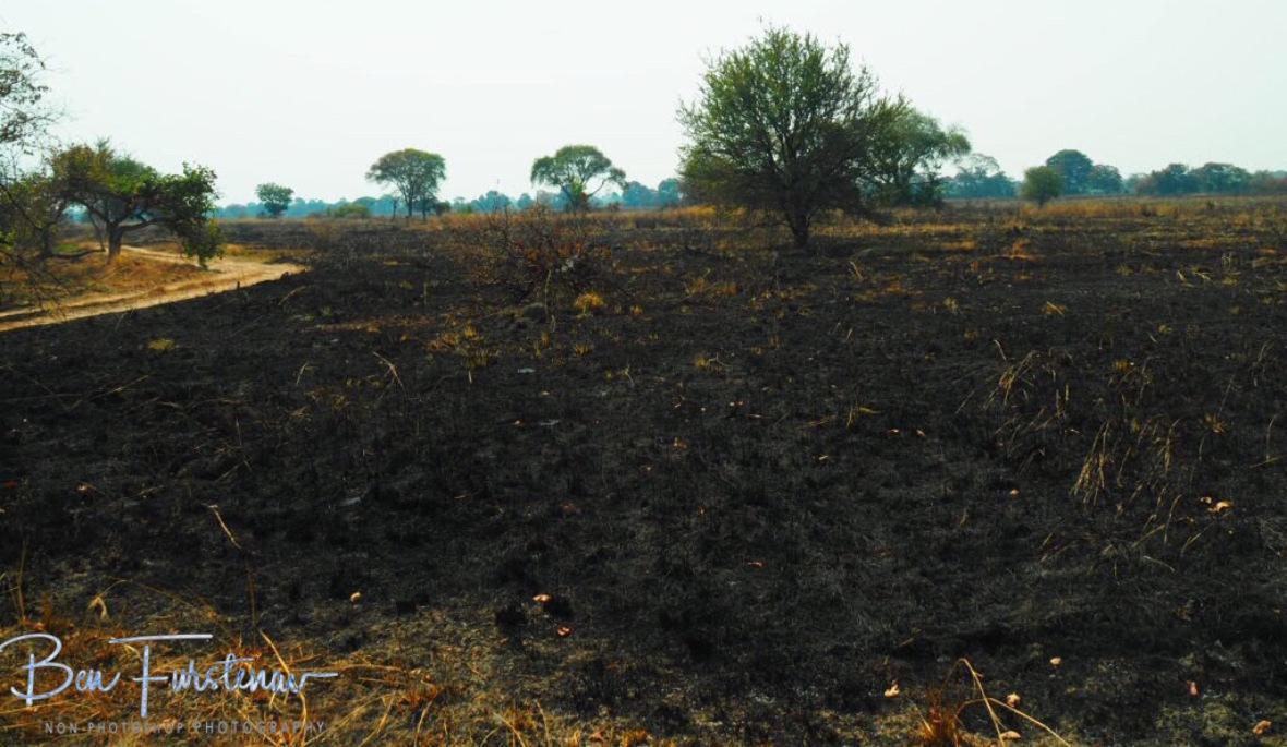 Empty, Burnt land, Kafue National Park, Zambia
