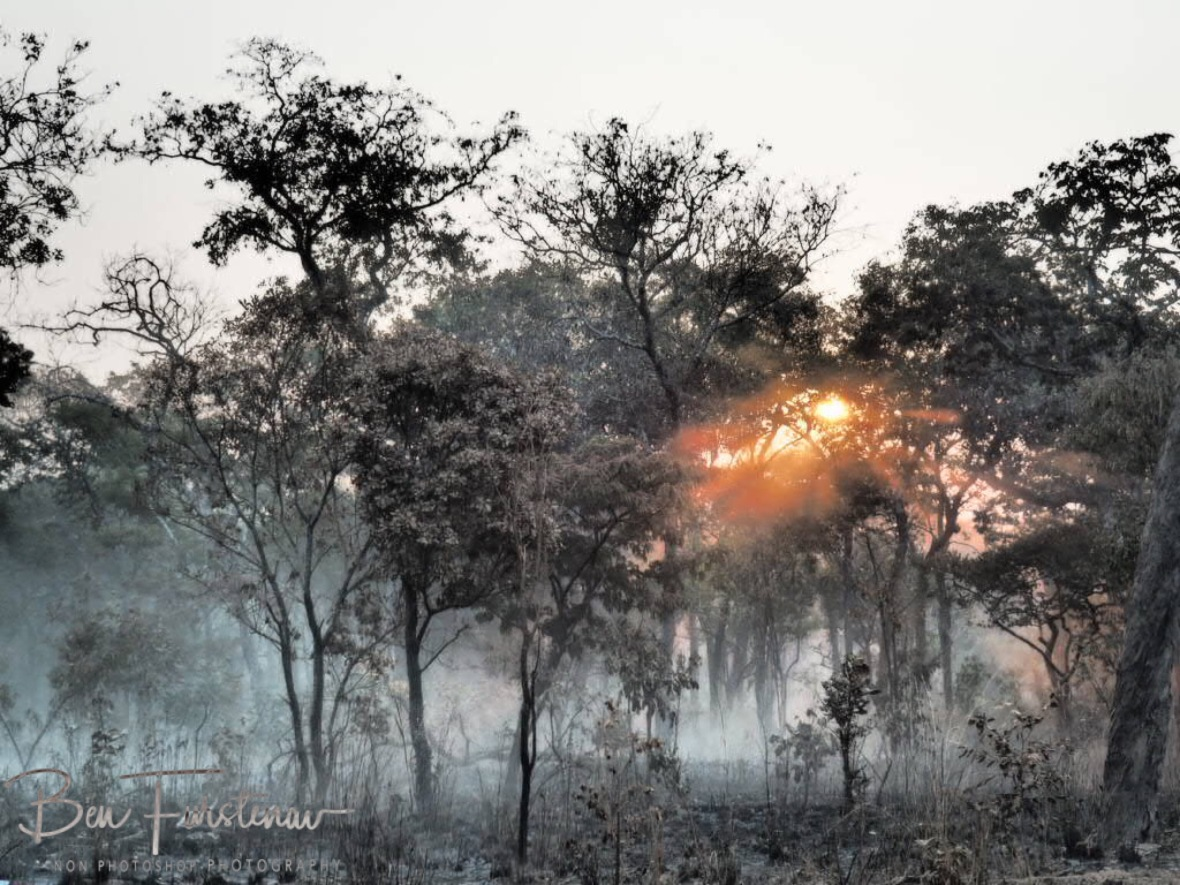 Dust covered sunset, Kafue National Park, Zambia