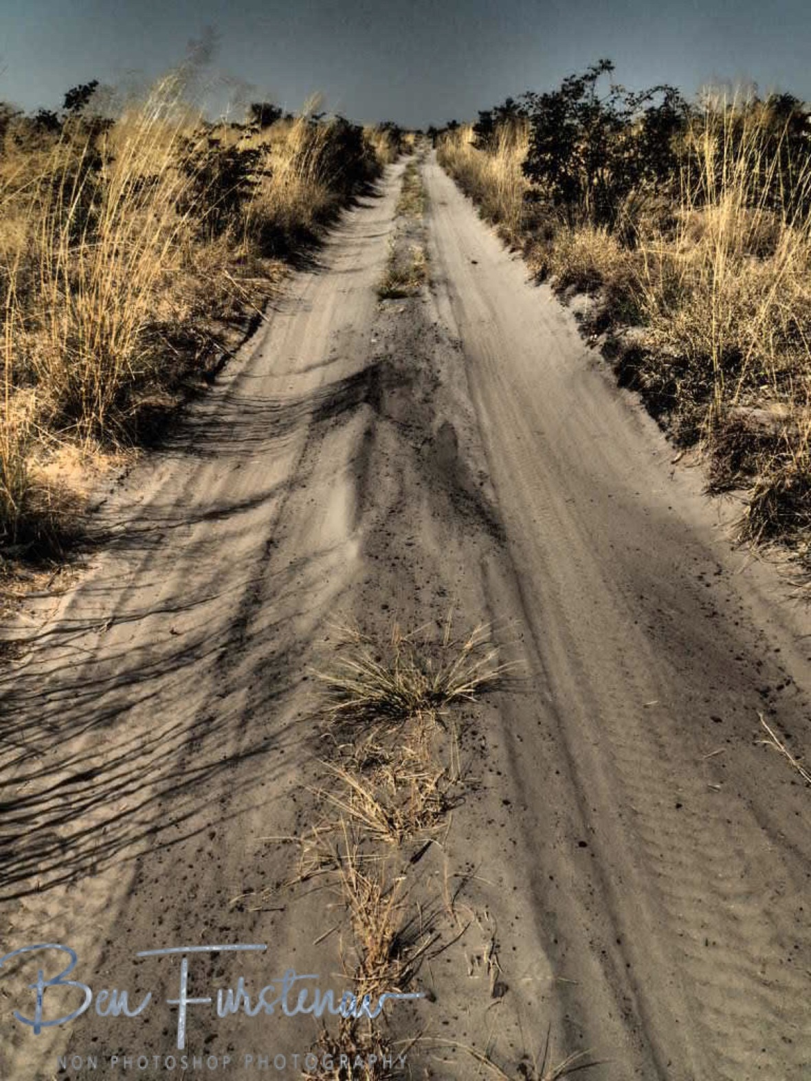 The long and sandy road, Moremi National Park, Okavango Delta, Botswana