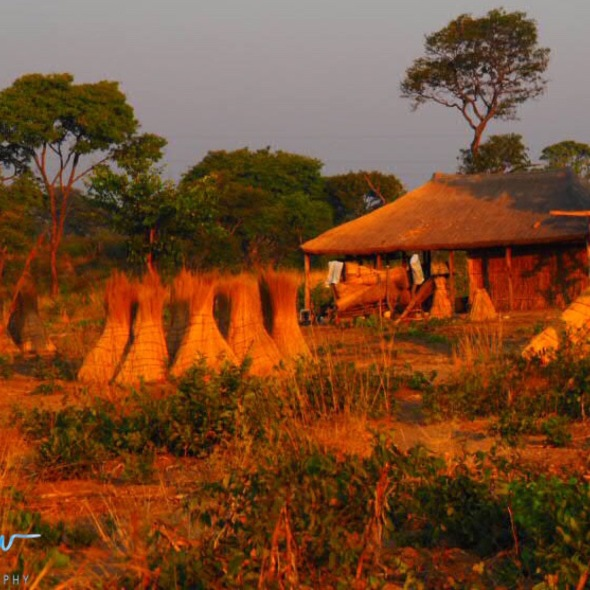 Typical housing near Lukulu, Zambia