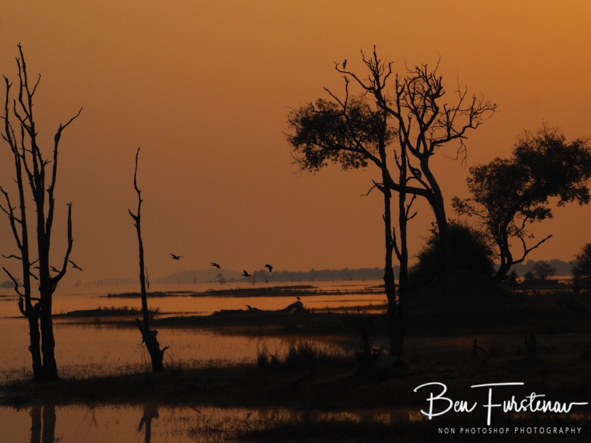 Early morning arrival, Kafue National Park, Zambia