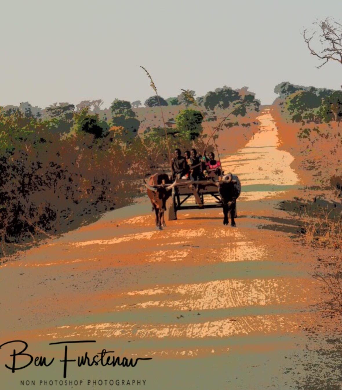 Family transport near Lukulu, Zambia