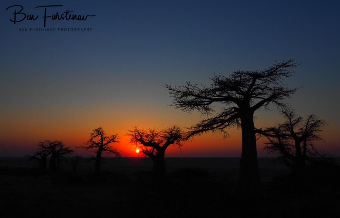 Here comes the Sun, Kubu Island, Makgadikgadi Salt Pans, Botswana