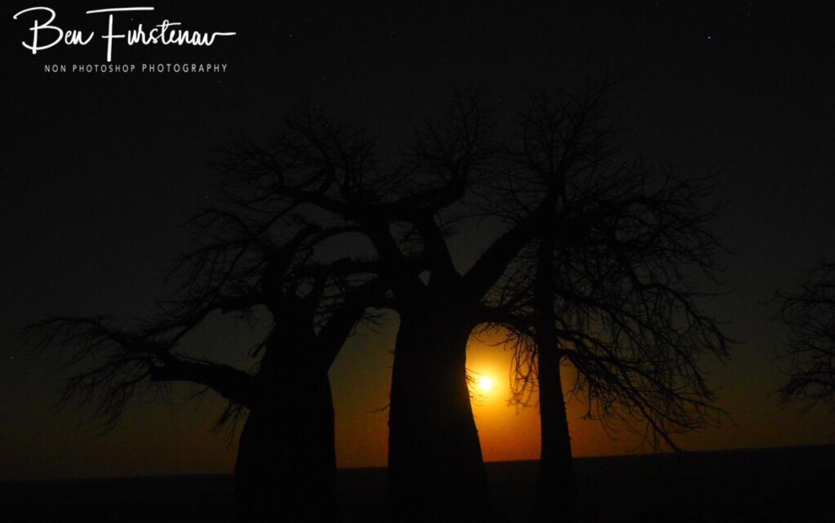 Moon rise over Kubu Island, Makgadikgadi Salt Pans, Botswana