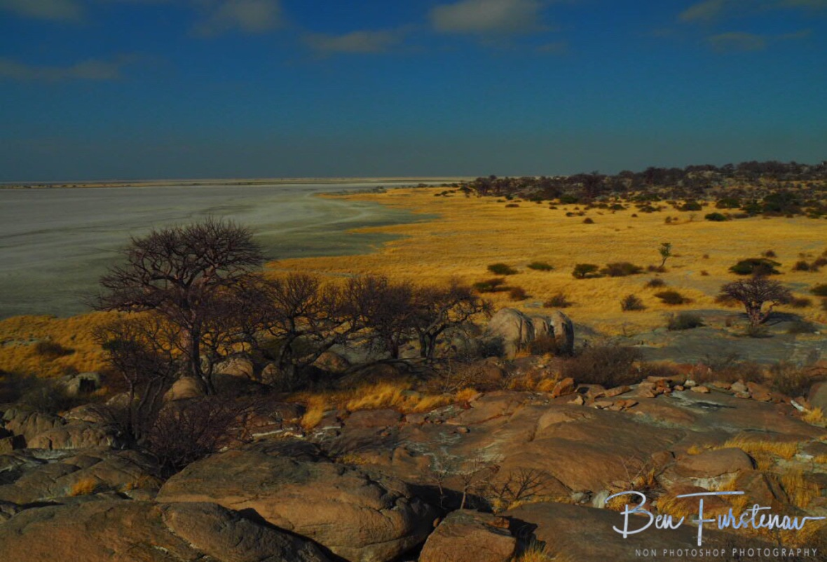 Kubu islands east coast, Makgadikgadi Salt Pans, Botswana