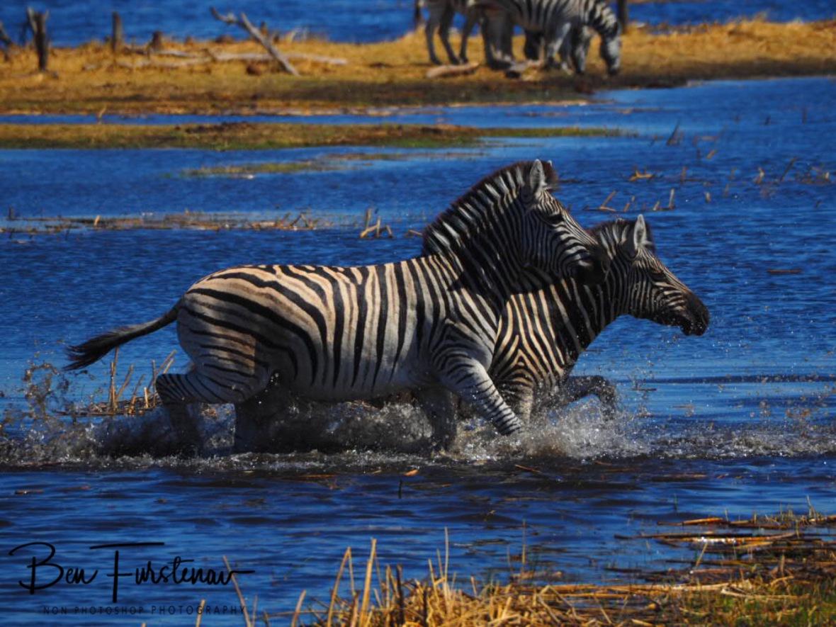 Double shower, Makgadikgadi National Park, Botswana