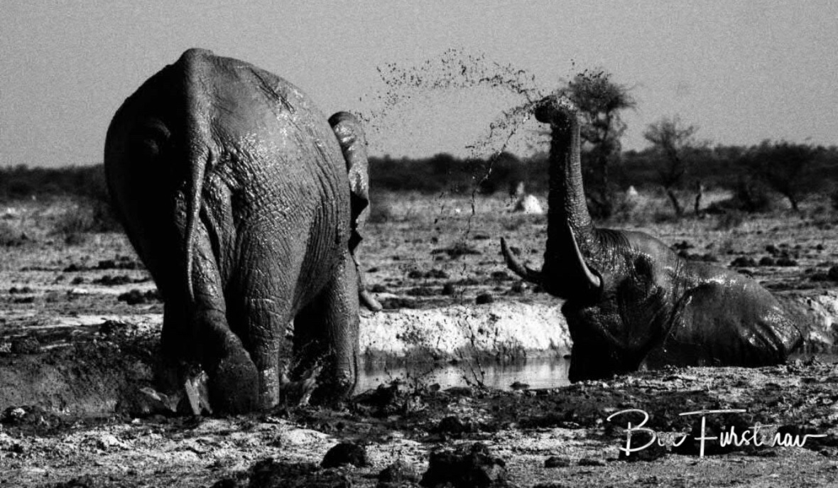 Welcome back shower, Nxai National Park, Botswana