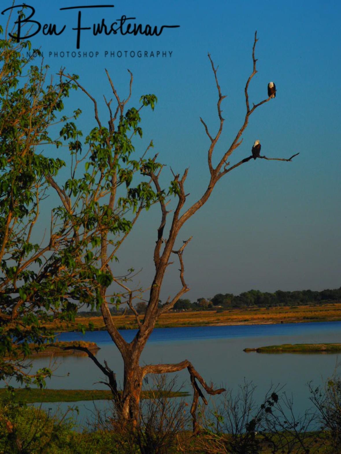 High vantage point, Chobe National Park, Botswana
